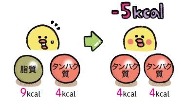 脂質は、たんぱく質量と同じ重さでもカロリー数が高くなります。