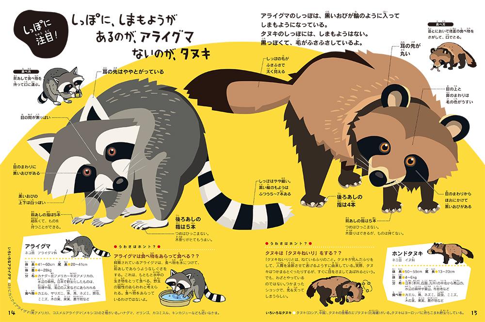 「タヌキとアライグマ」本誌紙面