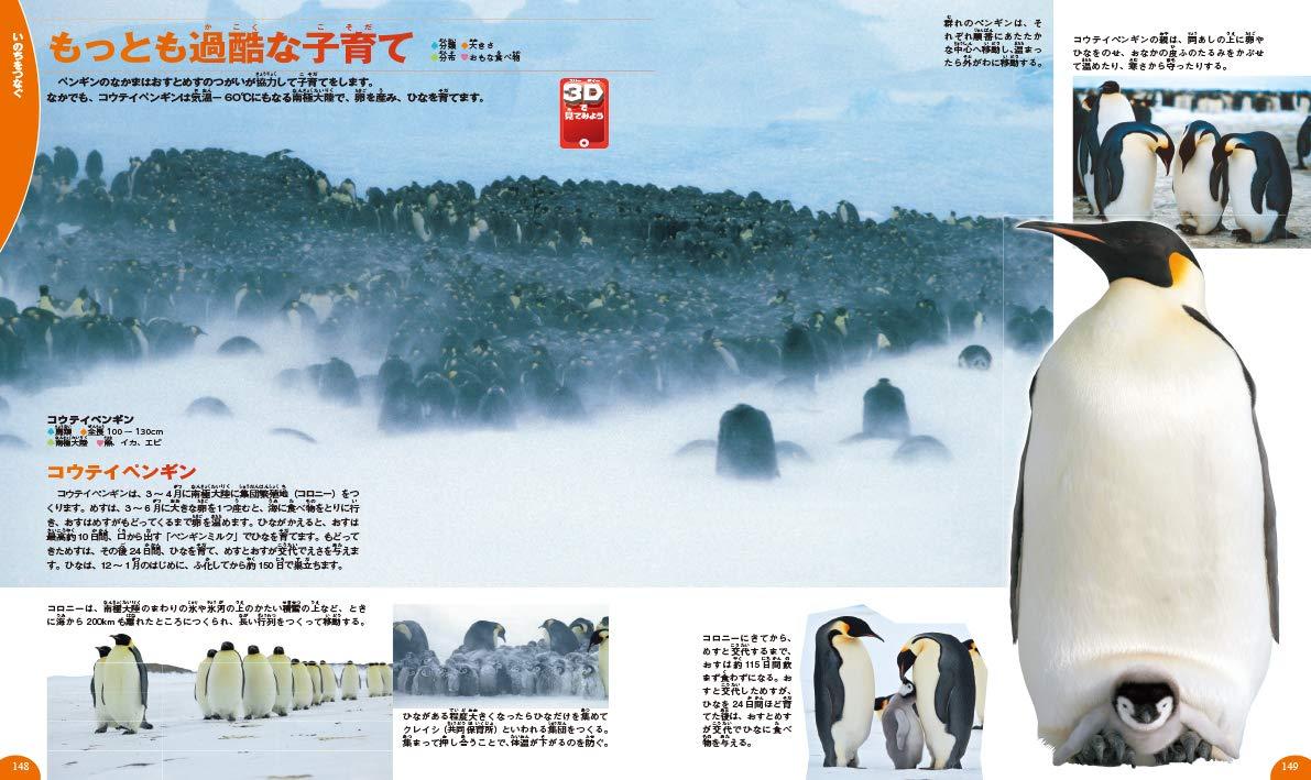 「極寒で子育てをするコウテイペンギン」紙面