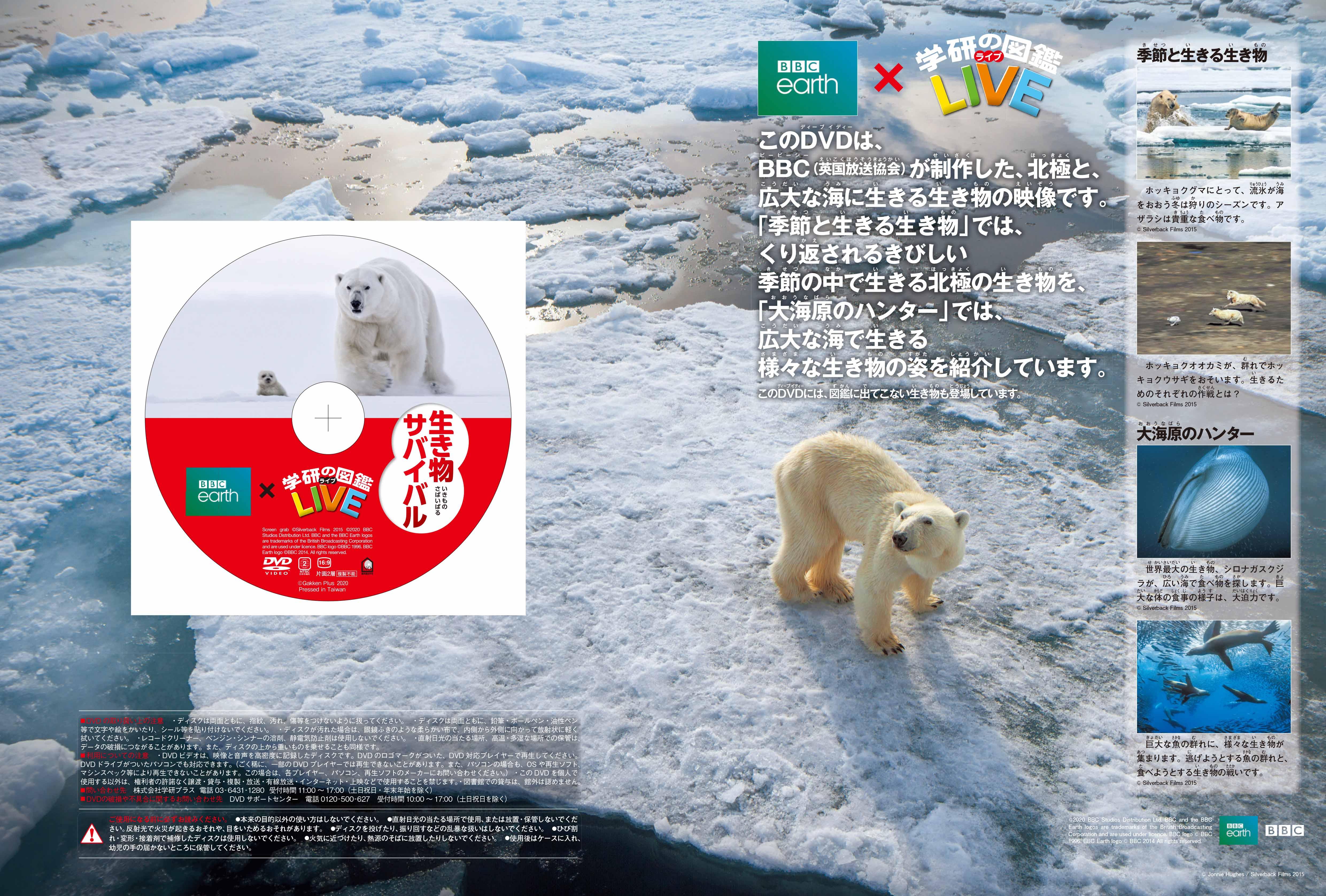 「極を生きる動物と海のハンターにフォーカスした、豪華2話構成 DVD」盤面