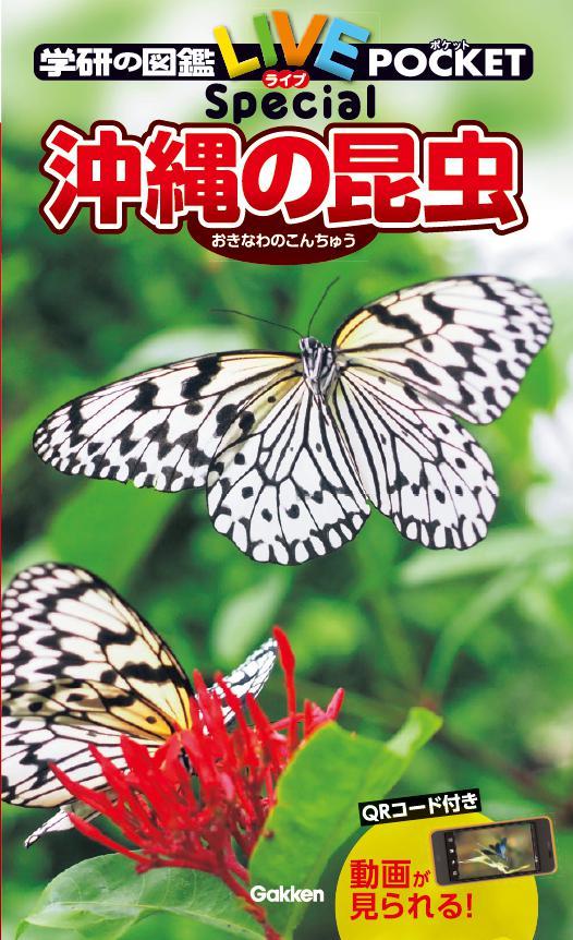 『沖縄の昆虫』書影