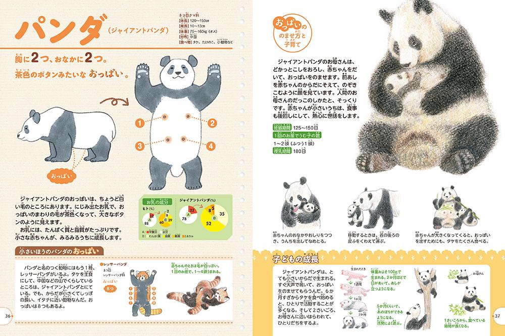 「のませ方」に注目「パンダ」紙面