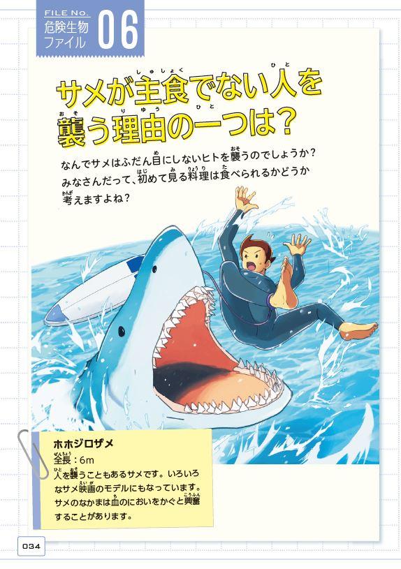 「サメが人を襲うのにも理由があるので」紙面