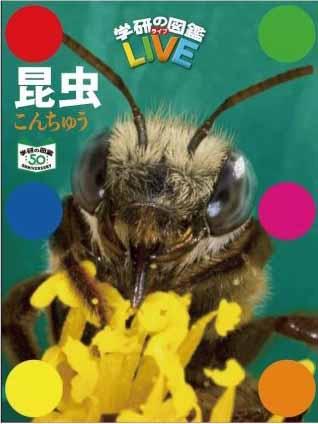 「『学研の図鑑LIVE 昆虫 特別版』」書影
