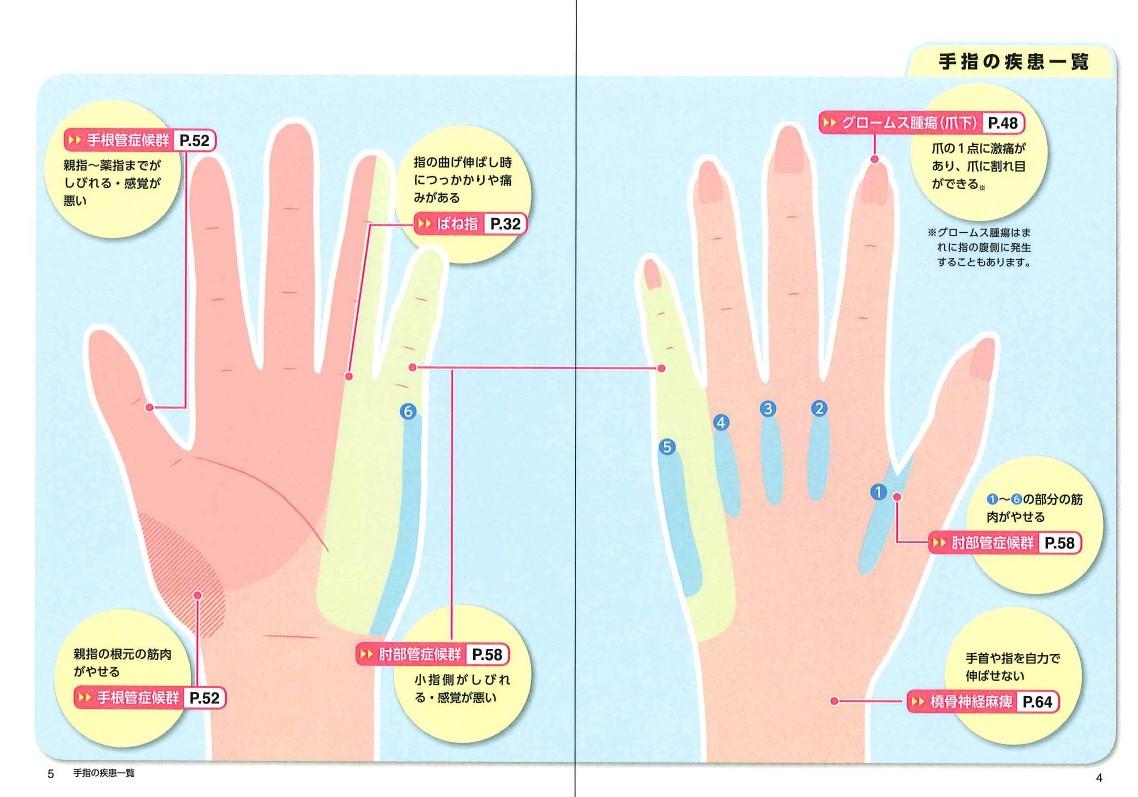 「私たちの手指は、常に疾患や怪我のリスクにさらされている」紙面