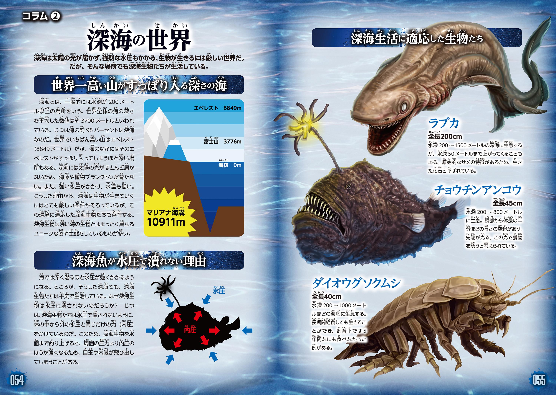 神秘的な深海の世界と、未だ謎が多い深海魚についてもわかりやすく説明