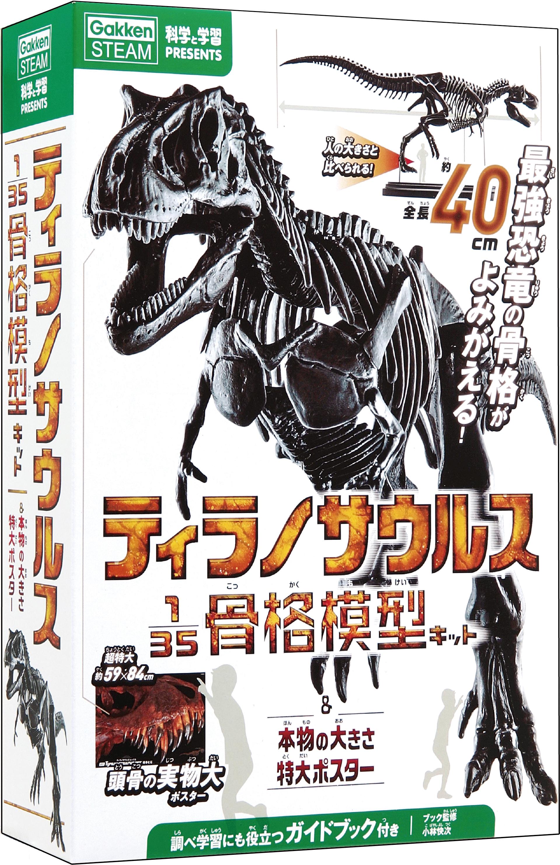 『科学と学習PRESENTS ティラノサウルス135骨格模型キット&本物の大きさ特大ポスター』書影