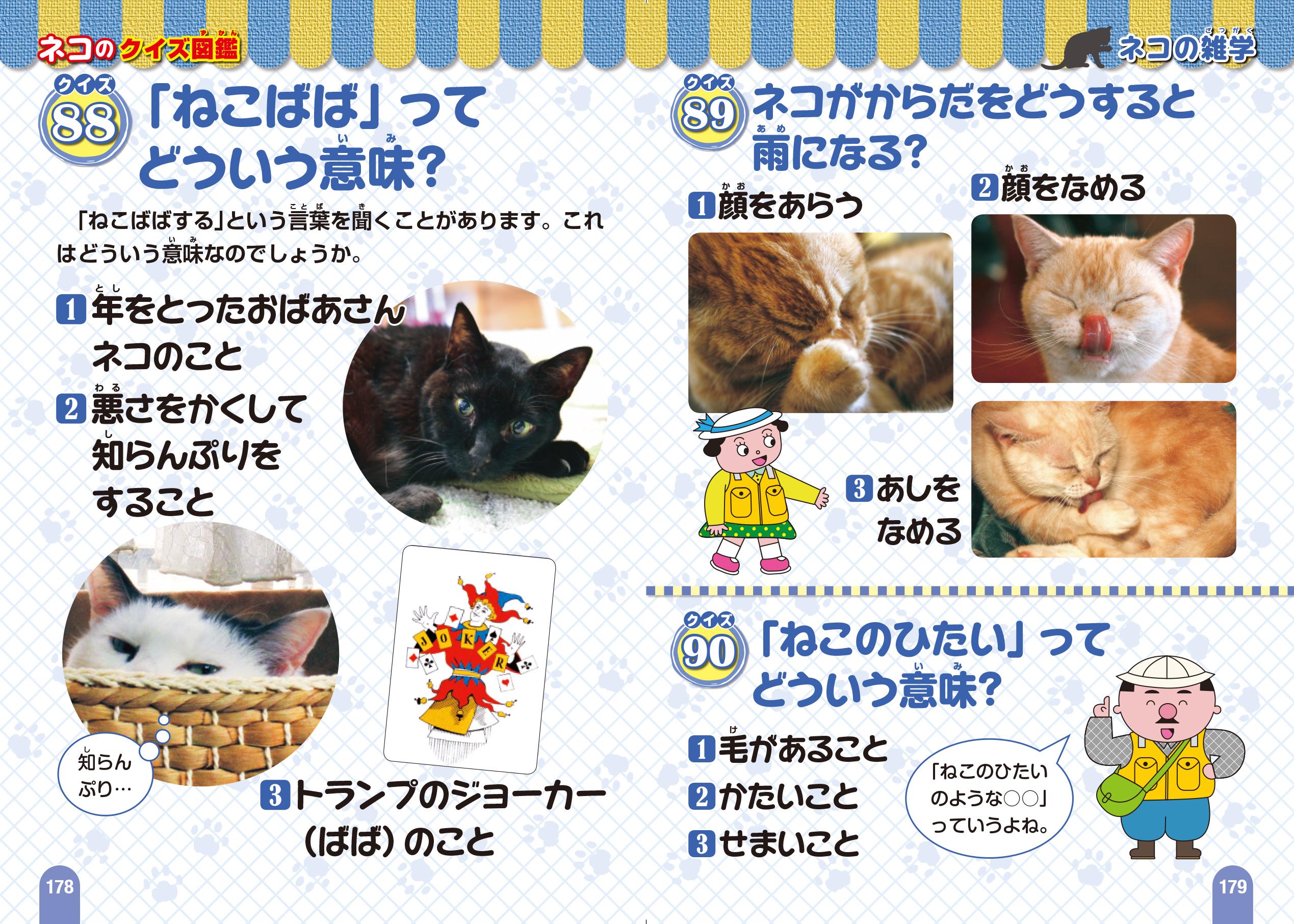 「ネコがもっと好きになる! おもしろ雑学」紙面