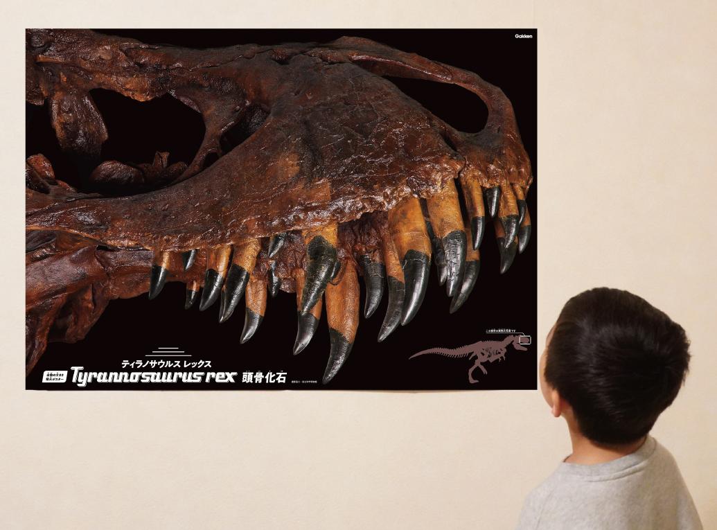 「本物の大きさ特大ポスター」画像