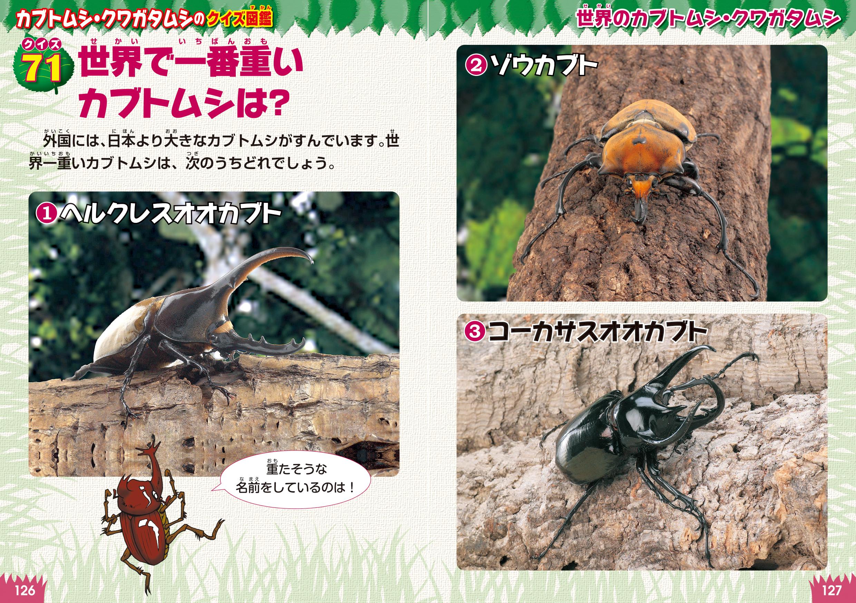 「世界で一番重いカブトムシは」紙面