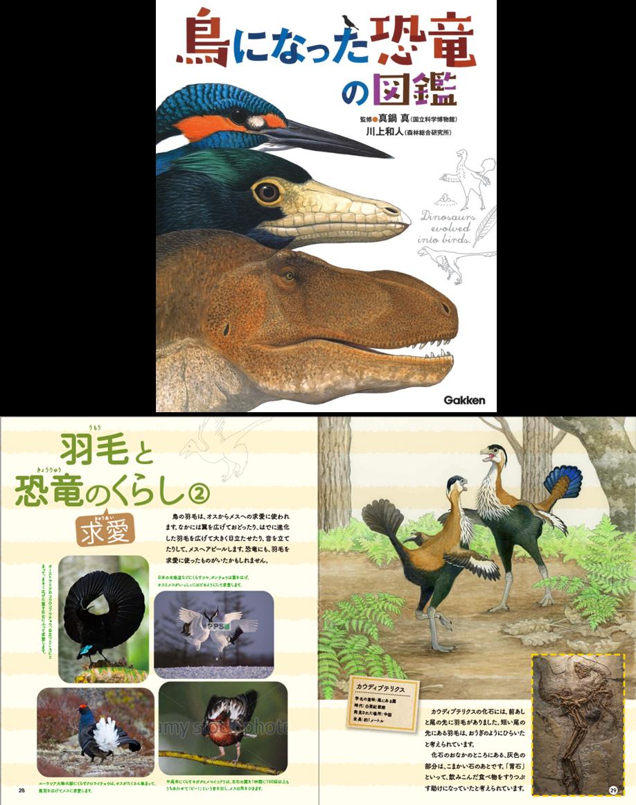 『鳥になった恐竜の図鑑』s書影と紙面